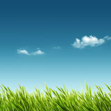 Abstract summer and spring backgrounds. For your design Royalty Free Stock Images