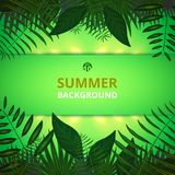 Abstract of summer time background with leaves and golden light. Background, Illustration vector eps10 royalty free illustration