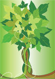 Abstract summer tree. Abstract green summer tree - vector royalty free illustration