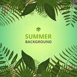 Abstract of summer vacation background with leaves and golden li. Ght background, Illustration vector eps10 royalty free illustration