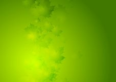 Abstract summer vector background with green leaves Stock Photos