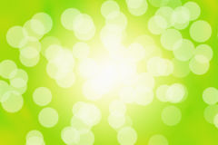 Abstract Sun Flares. Sun flares on a green natural abstract background royalty free stock images