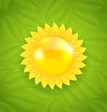 Abstract sun on green leaves texture Royalty Free Stock Image