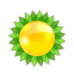Abstract sun with leaves isolated Royalty Free Stock Photography