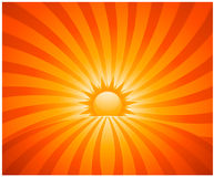 Abstract sunburst. Vector sun background Stock Photography