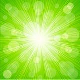 Abstract sunburst light background. Vector Abstract  sunburst light background Royalty Free Stock Photos