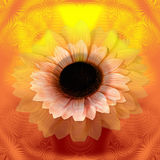 Abstract sunflower Stock Photography