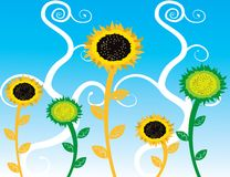 Abstract sunflowers  Illustration summer Royalty Free Stock Images