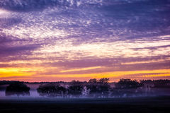 Abstract sunrise landscape on the farm in florida Stock Photo