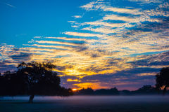 Abstract sunrise landscape on the farm in florida Stock Images