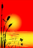 Abstract sunset. With cane butterfly and dragonfly royalty free illustration