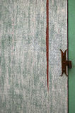 Abstract surface: fragment of old wooden door Royalty Free Stock Photo