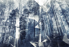 Abstract surreal forest background. Blue toned photo collage. With chaotic 3d structure royalty free illustration