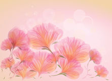 Abstract sweet flowers Royalty Free Stock Images
