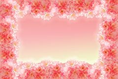 Abstract sweet pink sakura frame Royalty Free Stock Photography
