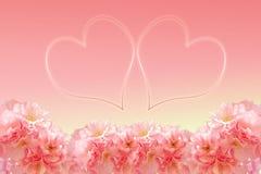 Abstract sweet pink sakura frame Stock Photo