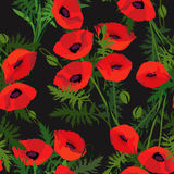 Abstract swirl flowers  poppy seamless Texture Royalty Free Stock Image