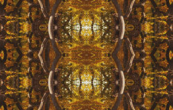 Abstract swirling background of yellow and brown. Royalty Free Stock Images