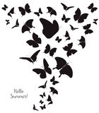 Abstract Template with Butterflies for Fashion and Postcard. Stock Photography