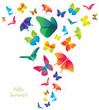 Abstract Template with Butterflies for Fashion and Postcard. Royalty Free Stock Photos