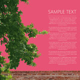 Abstract text card with tree and fence. Greeting text card with tree and brick wall fence Royalty Free Stock Photos
