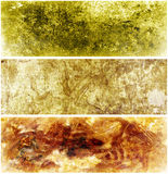 Abstract Texture Backgrounds royalty free illustration