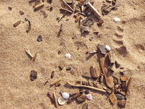 Abstract texture in cold colors of sand Royalty Free Stock Photography