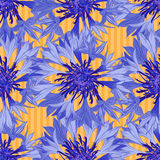 Abstract texture with cornflower. Seamless pattern with festive flower bouquet ornament. Vector illustration Stock Photos