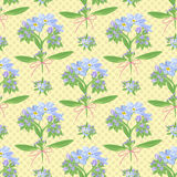 Abstract texture with forget-me-not. Seamless pattern with flower bouquet ornament Stock Photography