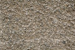 Abstract texture of a gravel wall background royalty free stock images