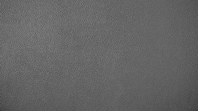 Abstract texture of grey skin leather royalty free stock images