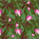 Abstract texture with roses. Seamless pattern with festive flower bouquet ornament Stock Photography