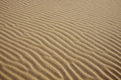 Abstract texture of a a sand dune Royalty Free Stock Images