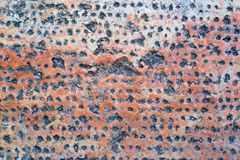 Abstract stone surface Stock Photography