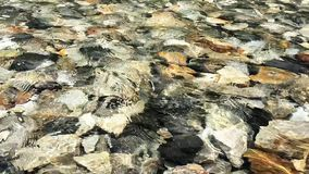 Abstract texture transparent clear waters stock footage