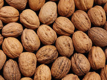 Abstract Texture Walnut Shells. Close up view of multiple walnuts Stock Photos
