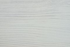 Abstract texture of a white tree Royalty Free Stock Photography