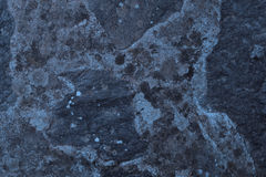 Abstract textured concrete background. Grey texture close up blank for design. Copy space. Stock Photography