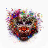 Abstract tiger head Royalty Free Stock Photo