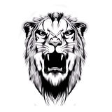 Abstract tiger head Royalty Free Stock Image