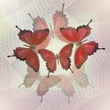 Abstract tile in romantic style with butterfly on misty background Royalty Free Stock Image