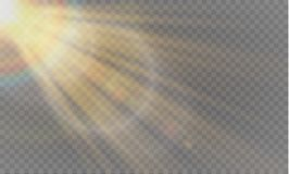 Abstract transparant speciaal het lichteffectontwerp van de lens gouden voor zonnegloed Stock Foto