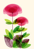 Abstract transparent flowers Royalty Free Stock Photos
