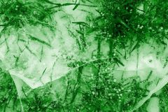 Abstract transparent texture natural ice of green color Stock Image