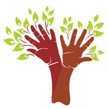 Abstract tree. Vector illustration - abstract beautiful tree hands-branch royalty free illustration