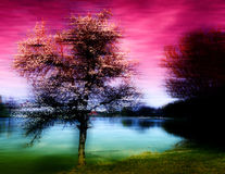 Abstract tree. On blurry background royalty free stock photography