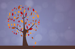 Abstract tree - autumn season Stock Photos