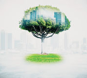 Abstract tree with cityscape. On light background. Double exposure Royalty Free Stock Photo