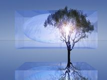 Abstract Tree in Glass Stock Images