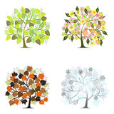 Abstract tree - graphic elements - Four Seasons Stock Photos